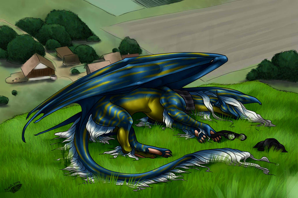 Grassy Sleep by Natoli