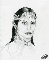 Elven chancellor by Natoli