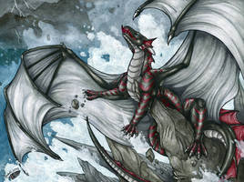 Roar of the Storm by Natoli
