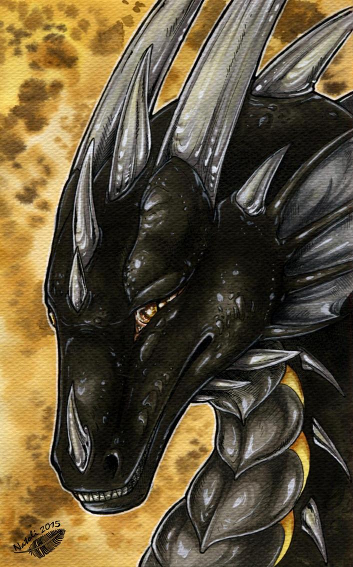 Golden Black by Natoli