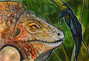 Woodswallow ACEO by Natoli