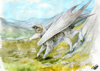 Dragon Zodiak: Aries by Natoli