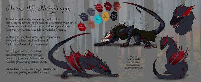 Haru the Nargacuga Refsheet by Natoli