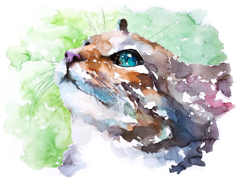 Cat#22 by PanRafik
