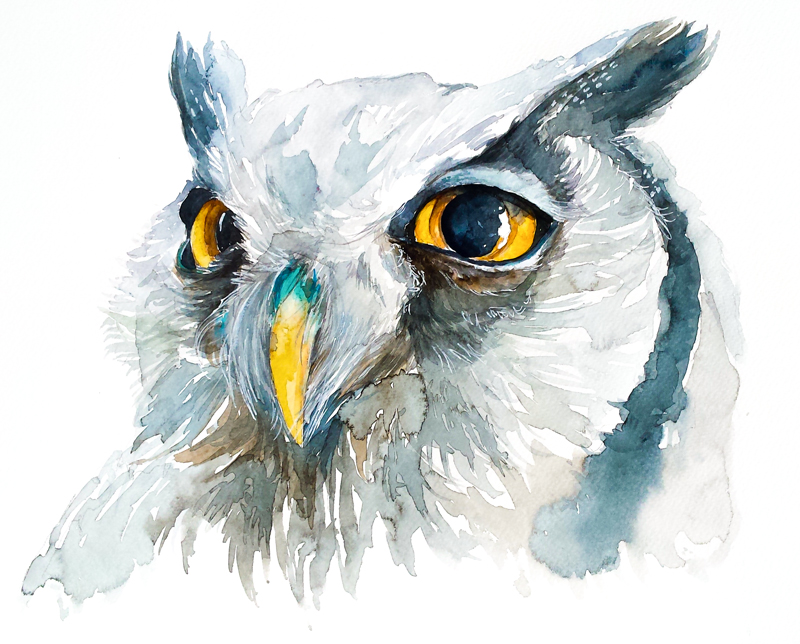 BIRD#11 by PanRafik