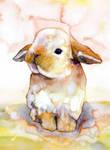 Bunny#15