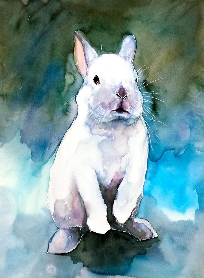 Bunny#17 by PanRafik