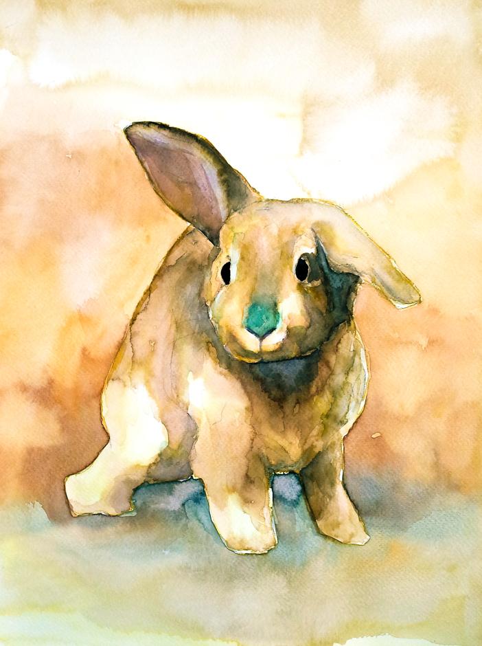 Bunny#18 by PanRafik