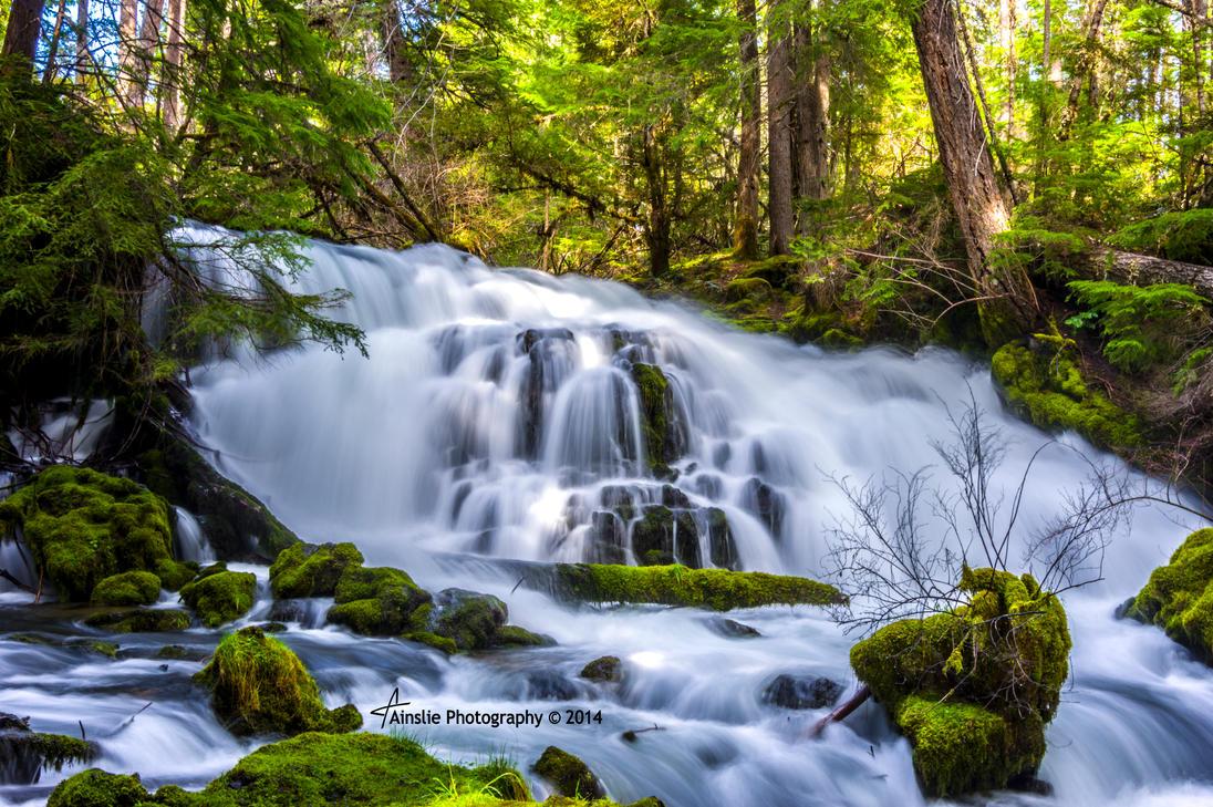 1373 Pearsoney Falls by ainsliehubert