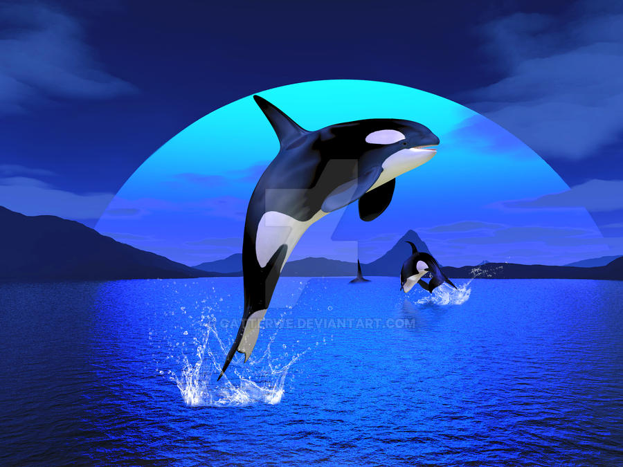 ORCA  Dental AI