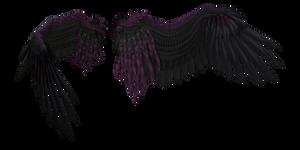 Dreamy Black Purple Wings 2