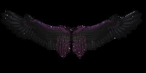 Dreamy Black Purple Wings 3