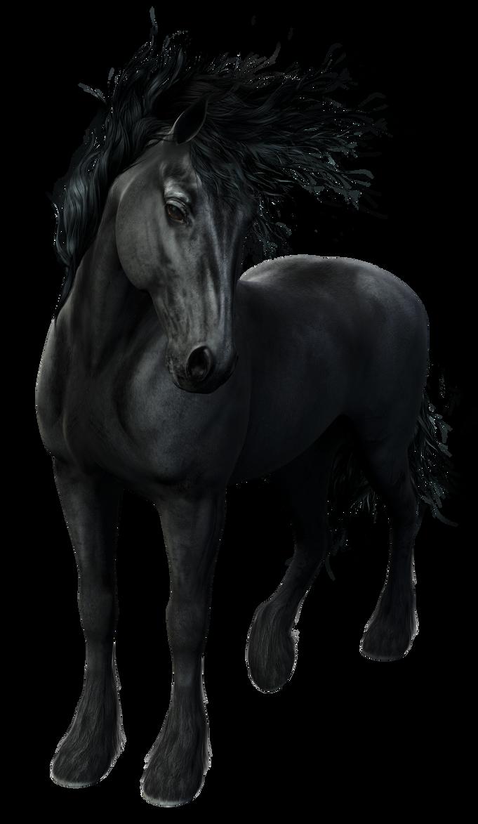 3d Friesian Horse by gatterwe