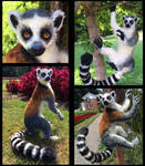 Ring Tailed Lemur Posable Doll