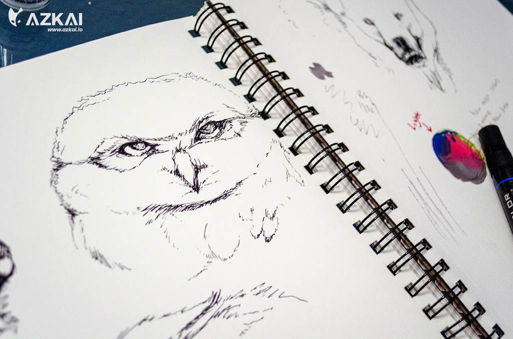 Owlet Sketch by AzKai