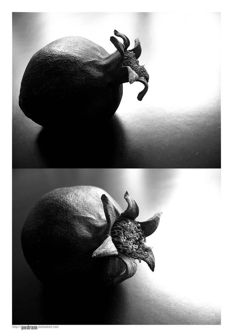 Phenomenon by Pedram
