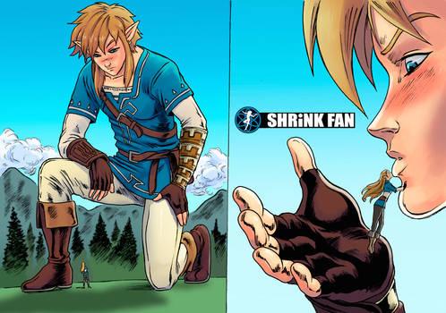Legend of Zelda: Curse of the Shrunken Princess