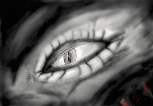 The Eye of Intuos