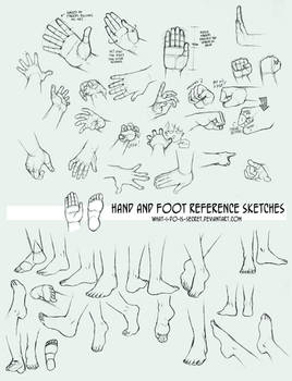 Multireference: Hands and Feet