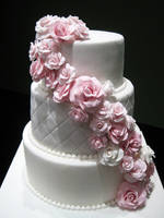 Cascading Roses by Sliceofcake
