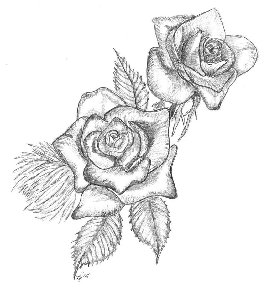 Two Roses Together Drawing Sketch Coloring Page