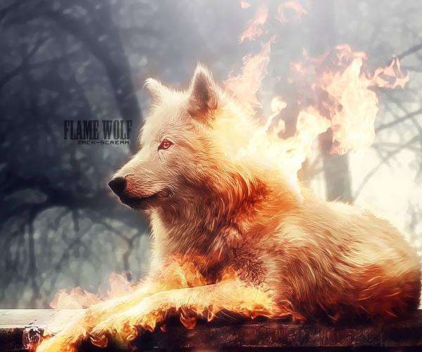 flame wolf by ZackScream