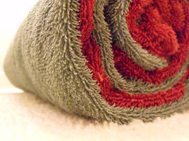 Red and Green Towel by austincraver