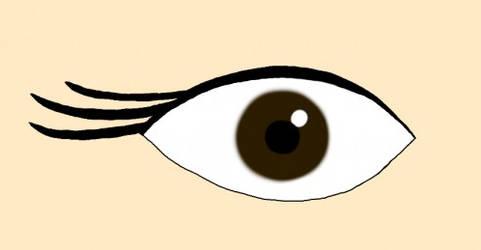 New Eyelash Style