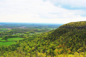 Albany Overlook by JohnnyNiffer