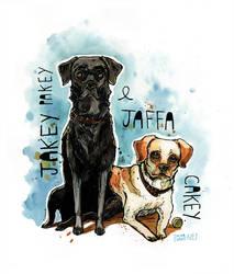 Jakey Pakey and Jaffa Cakey by T-EE