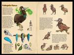 Naor - Koko Panua Character Sheet by Ahkward