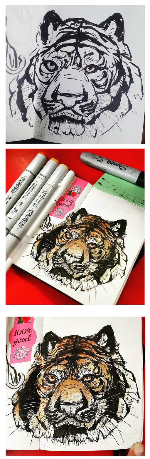 Tiger Trio by Ahkward