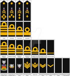 Grades et insignes - Ranks and Insignia (QC)