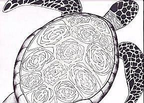 Sea Turtle by Bobbi-B
