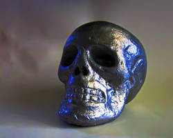 Aluminum Skull by Prankly