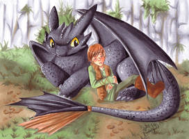 How to train your dragon by Pandablubb