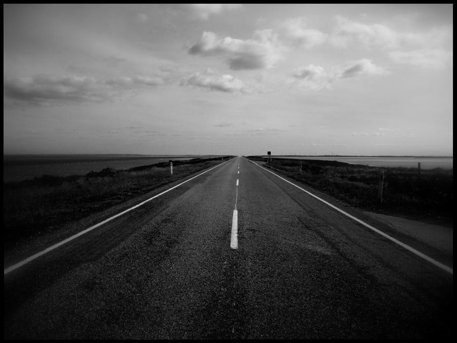 download pathology