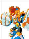 Knucleman TM concept
