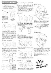#017 - Basic Construction of the Head by gregor-kari