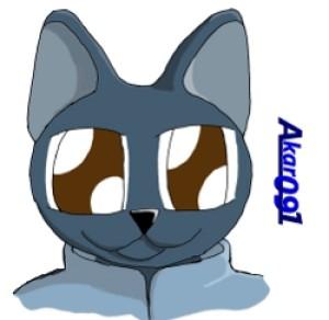 akar091's Profile Picture