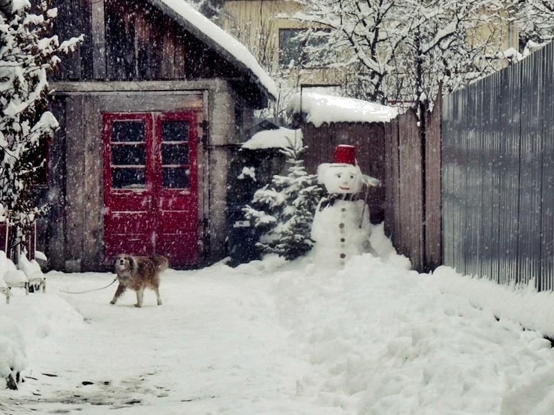 snowman by 3divine