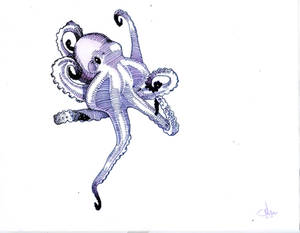 Birthday Octopus