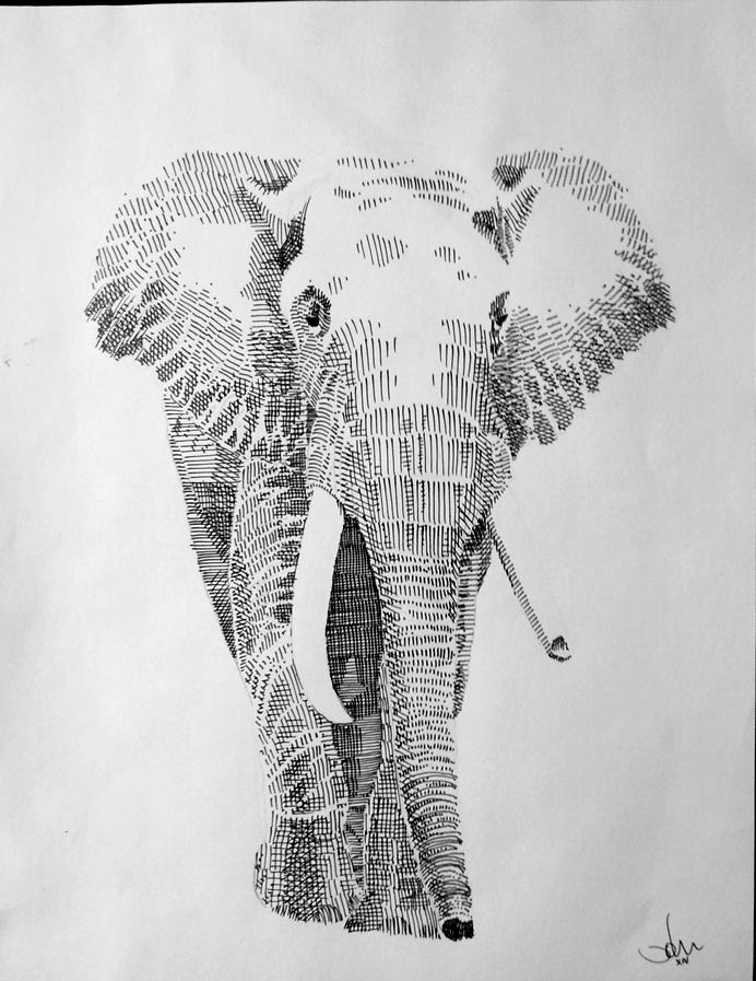 Mr. Elephant by littleweird