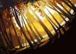 Childhood forest by SRK-ARTS