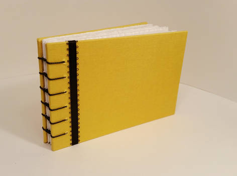 Yellow and Black Book