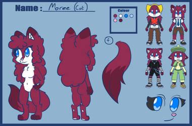 Maree The Turkish Angora Cat