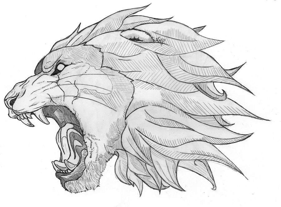 The Lion by skoppio