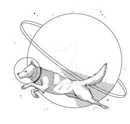 Commission: Concernig Space