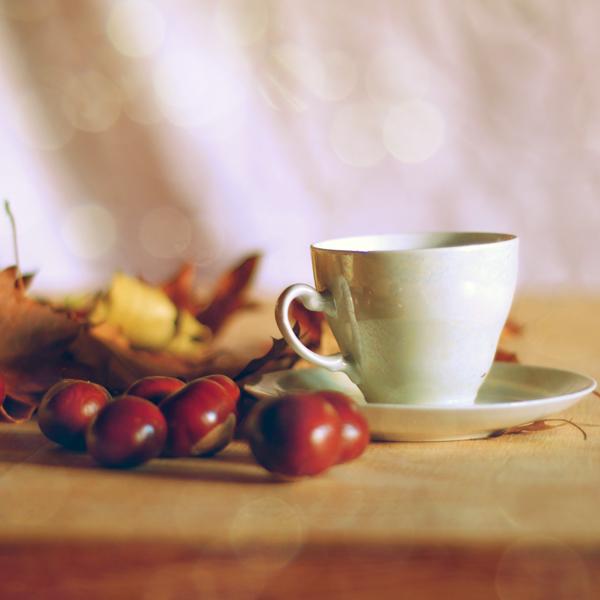 autumn breakfast... by impatienss