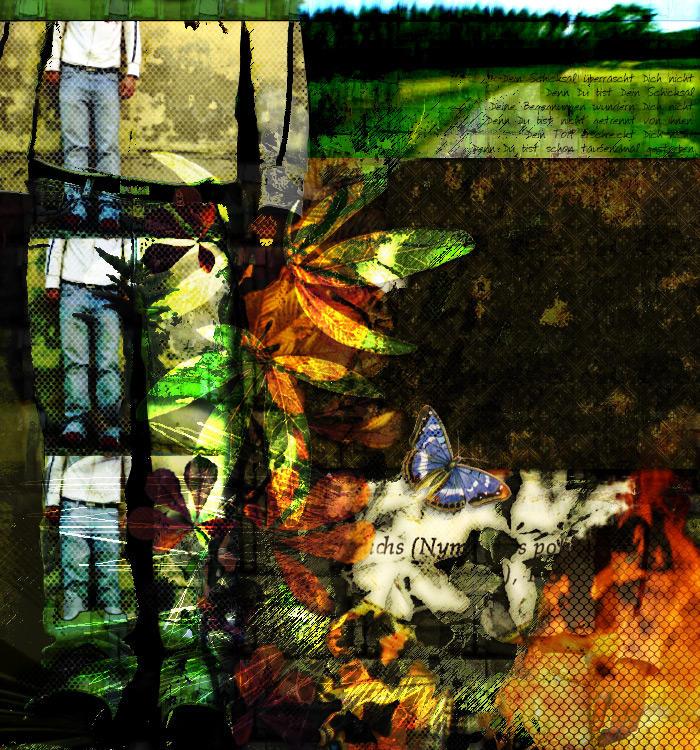 Dein Schicksal ... by axxis